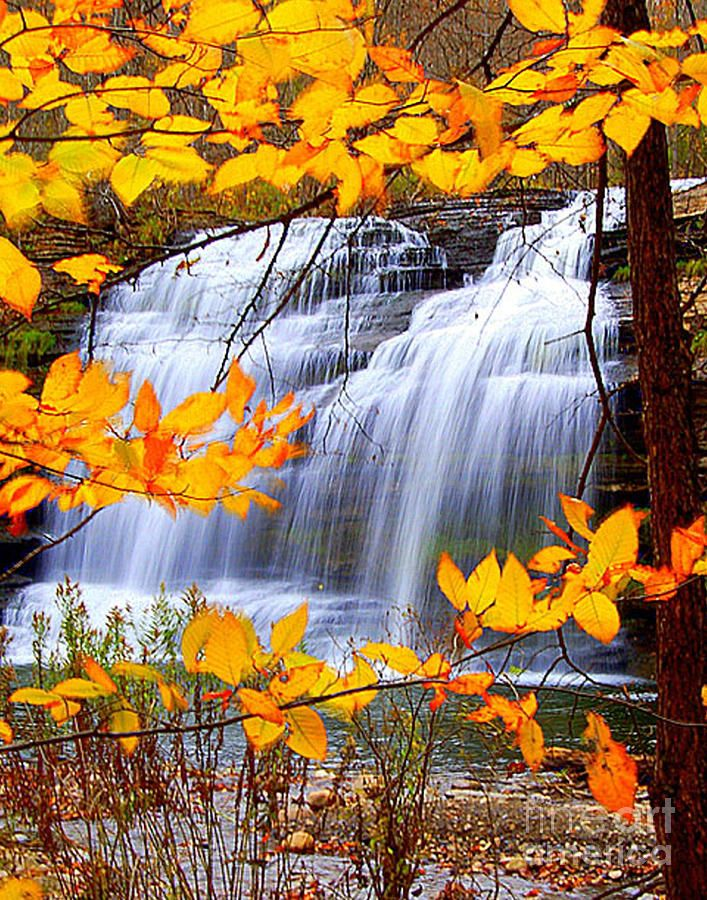 Autumn at Pixley Falls: Weights Loss Program, States Parks, Seasons Autumn, Art Prints, Beautiful Places, Pixley Fall, New York, Fall Color, Berries