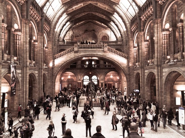 National History Museum London2013