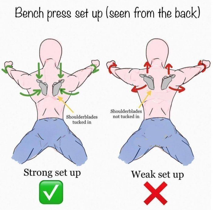 Bench Press Set Up Seen From The Back Best Monday Tips Benchpressweighttraining Weight Training Programs Chest Workouts Exercise