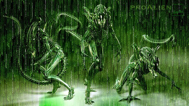 Alien enter The Matrix