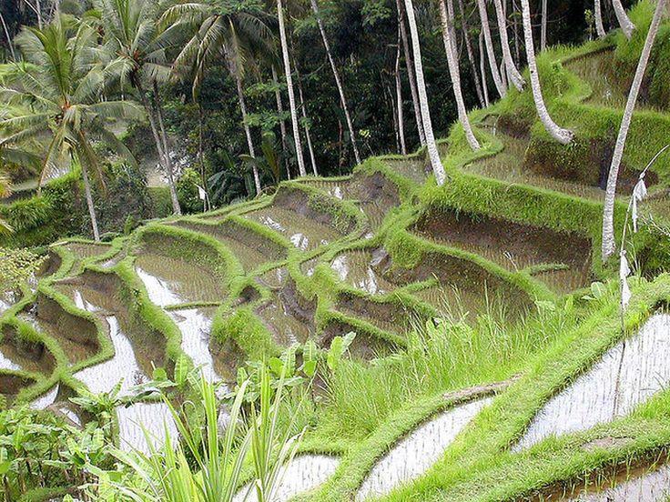 Les plus beaux endroits et paysages en Asie du Sud Est par Globe-Trotting. Les lieux à ne pas manquer en Asie du sud est, Que voir absolument en Asie du Sud Est