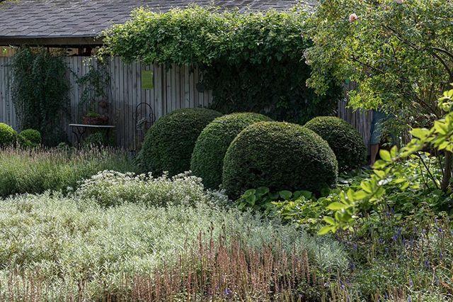 Många bilder från @ullamolinstradgard på bloggen (almbacken.se)⬆️. New blog post at almbacken.se ⬆️with photos from @ullamolinstradgard • #ullamolin #ullamolinsträdgård #gardendesign #trädgårdsdesign #trädgårdsinspiration #gardeninspiration #haveglæde #hageglede #havedesign #hagedesign #gardensofinstagram