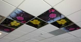 drop ceiling tiles painted with images