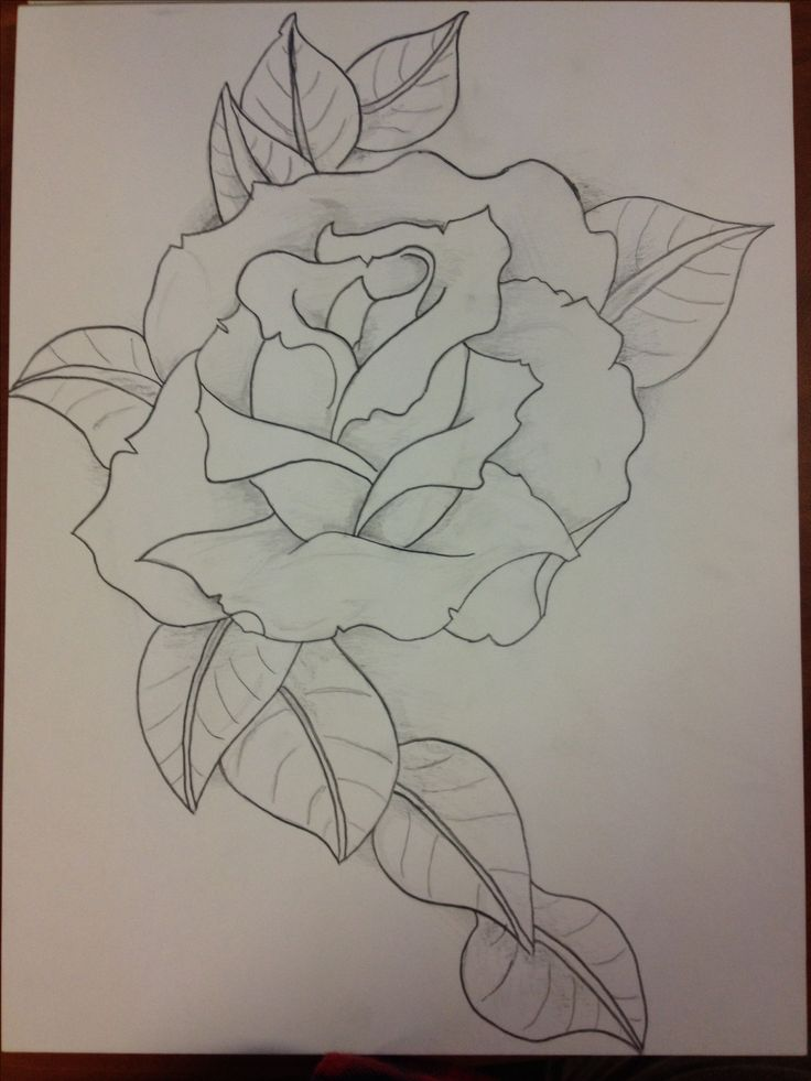 Best 25 rose drawings ideas on pinterest easy rose for Easy rose drawing tutorial