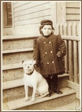 vintage photo child and pit bull