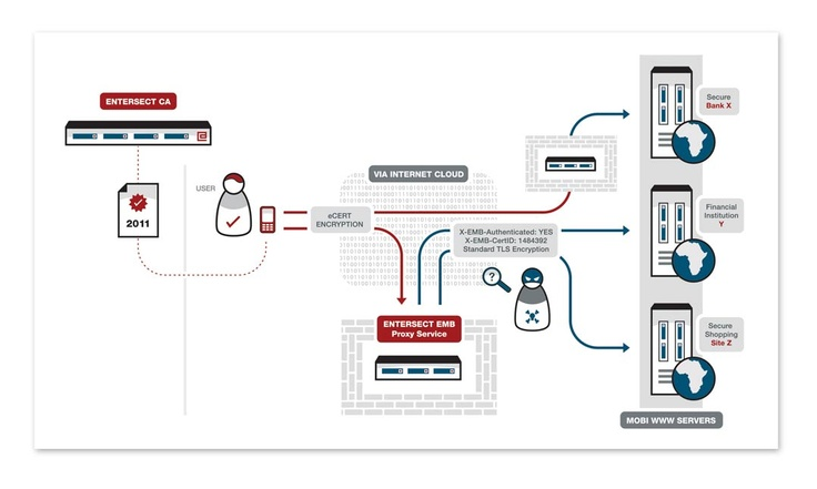 Entersect Infographics - Sunflood