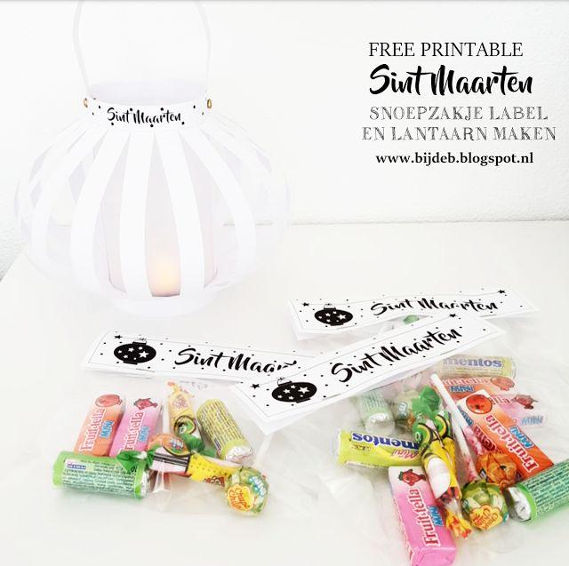bijdeb: Free printable Sint Maarten