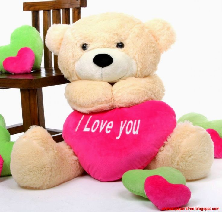 valentine's day teddy bear nz