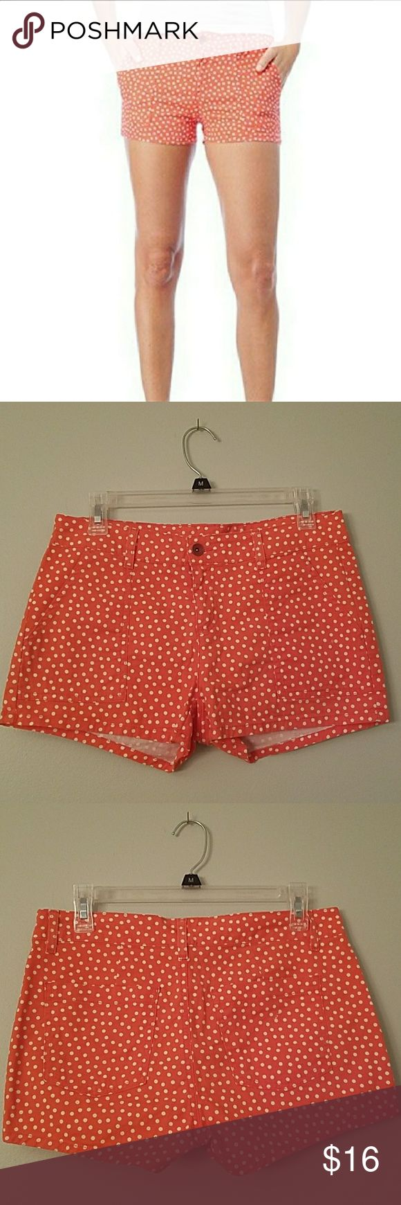 """☉SALE☉ Splendid Coral Polka-dot Shorts Gently used, Excellent condition  Women's Size 6 Length 10.5"""" Waist 32"""" Inseam 2.5"""" Clean smoke free home Splendid Shorts"""