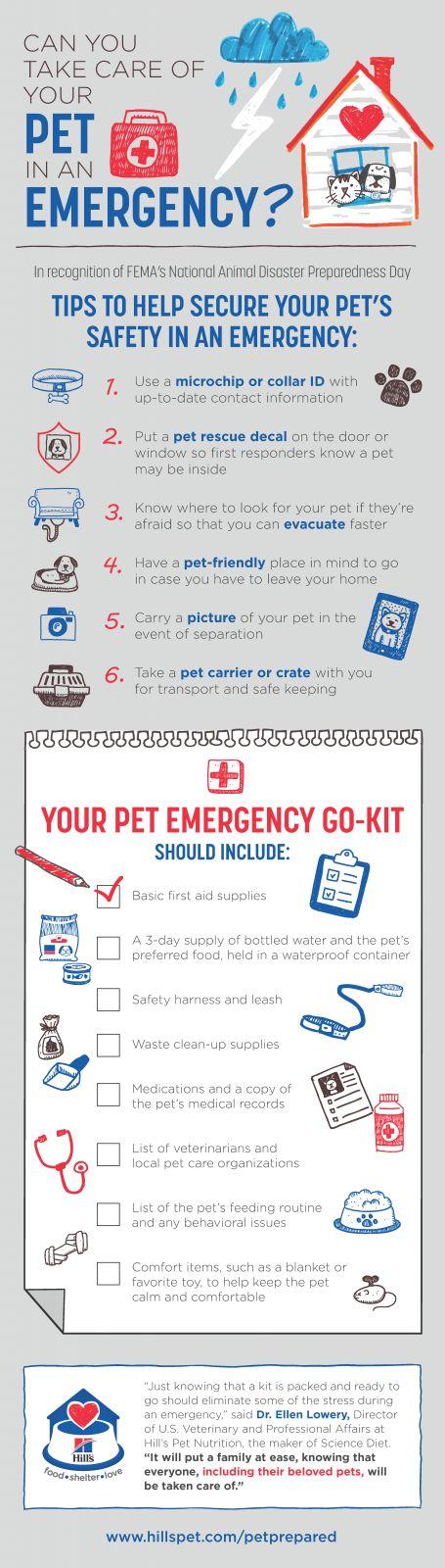 Best  Emergency Preparedness Ideas On   Emergency