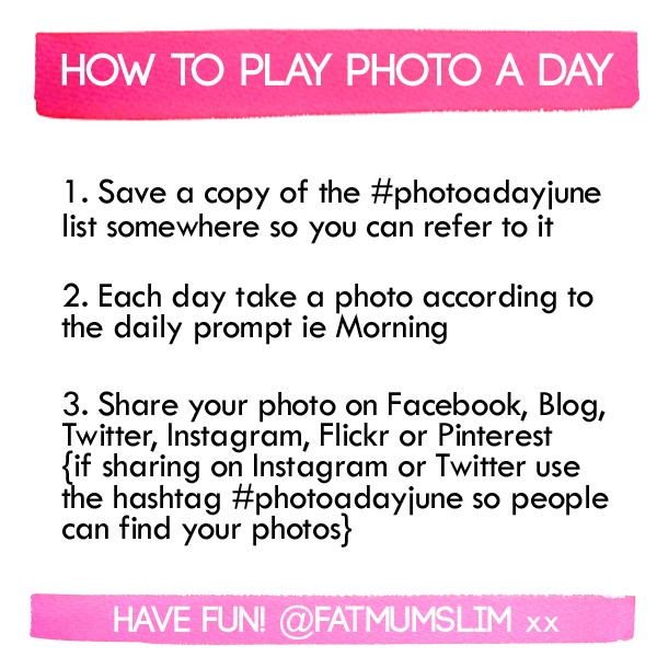 How to play photo a day