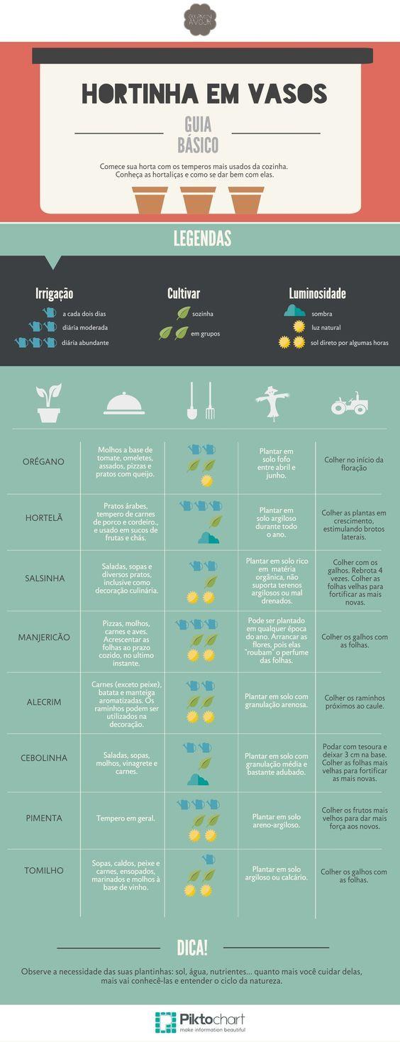 infografico horta em vaso 002: