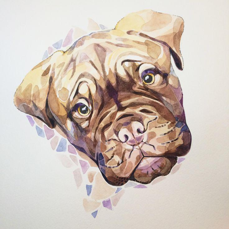 Dogue de Bordeaux watercolour 16in x 12in http://ift.tt/1SR3mA4