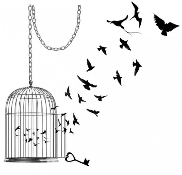 Resultado de imagem para passarinhos voando
