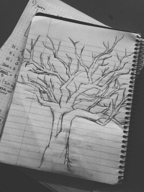 risultati immagini per lydia martin tree drawing