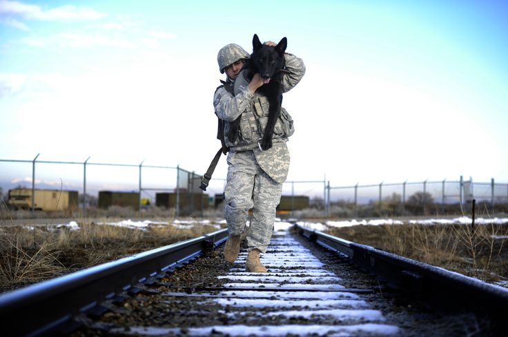 In the photo above, Staff Sgt. Erick Martinez, a military dog handler uses an over-the-shoulder carry to hold his dog, Argo II, at Hill Air Force Base, Utah, on March 4. The exercise helps build trust, loyalty, and teamwork    foreignpolicy.com