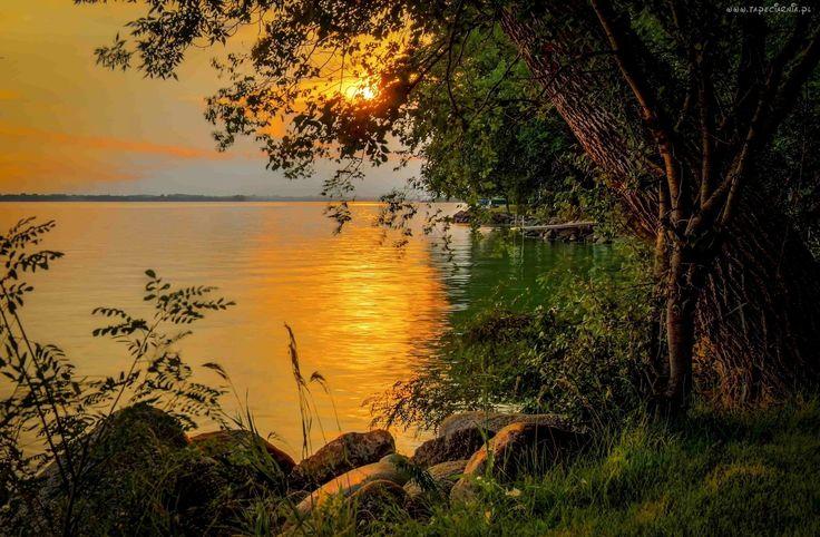 Jezioro, Drzewo, Kamienie, Zachód, Słońca, Roślinność