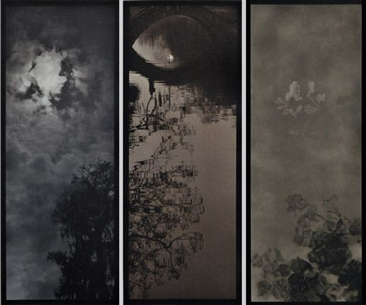 Josephine Sacabo Gum-Over-Platinum Triptych   Each print measures 30 x 15 inches. Gum-arabic images size is 24 5/8 x 9 5/8 inches. Signed on the recto. From the Ophelia's Garden series.