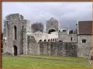 boyle abbey - Google Search