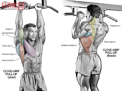 Blast Your Upper Body With Close-Grip Pull-Ups | FitnessRX for Men ...