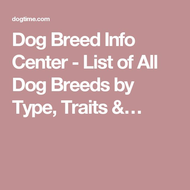 Dog Breed Info Center - List of All Dog Breeds by Type, Traits &…