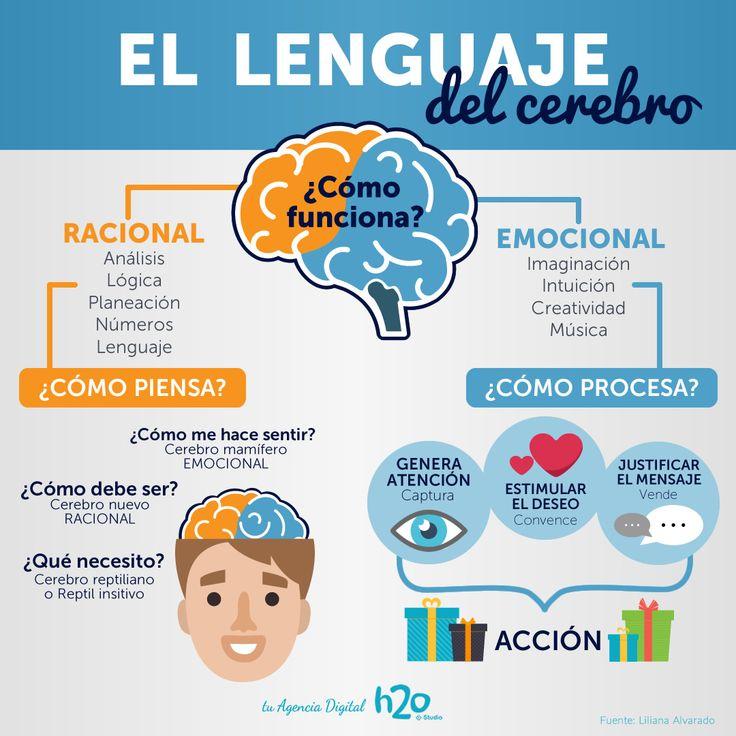 El lenguaje del cerebro 😃💭  Visítanos en www.h2o.cl  #h2oStudio #MarketingDigital #AgenciaDigital #Neuromarketing #Management #Desarrollo #MediosDigitales #EstrategiaDigital #TiendaVirtual #Diseño #RedesSociales #MarketingDeContenido #Soporte #Empresas #Pyme #SitioWeb #360Digital #VideoInteractivo #Santiago #ViñaDelMar #Regiones👦👦👦