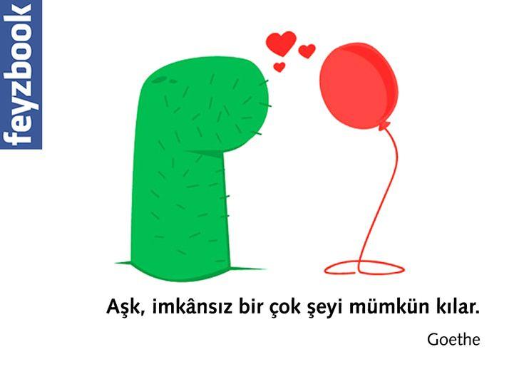 Aşk, imkânsız bir çok şeyi mümkün kılar.  Goethe