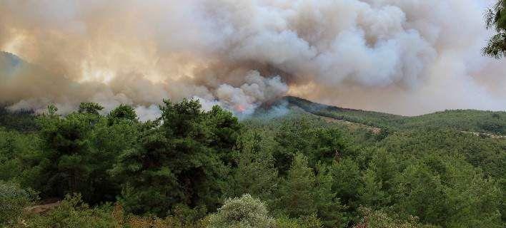 Αλεξανδρούπολη: Εψηνε παϊδάκια και έβαλε φωτιά στο δάσος