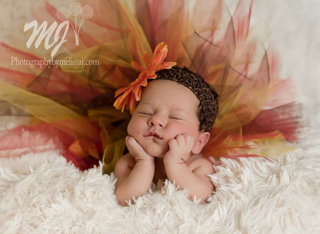 newborn photography poses - Google Search