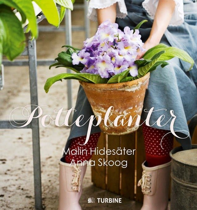 EN NY BOG OM POTTEPLANTER - Potted plants