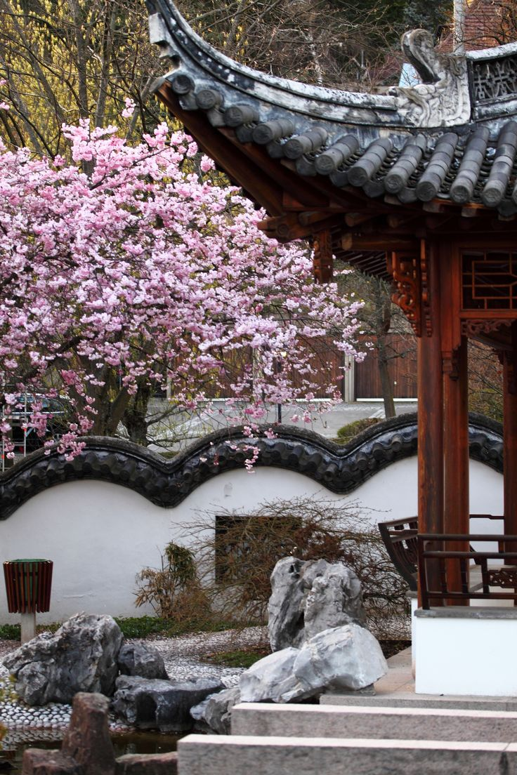 Best 25+ Chinese garden ideas on Pinterest | Dragon line, China garden and  Suzhou