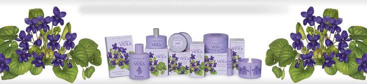 Accordo Viola ibolya illatú - Rendeld meg online! Parfüm és kozmetikum család a Lerbolario naturkozmetikumoktól
