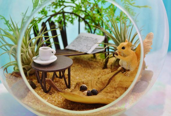 ♥´¨) ¸.•´ ¸.•*´¨)¸.•*¨) (¸.•´ (¸.•`♥~ This little Squirrel on a leaf is so adorable. If you love squirrels you will love him! The leaf and Squirrel are made of resin and set here in this amazing nature setting. Ive included a bench and table with a cup of coffee and the New York Times newspaper. You may choose another color sand choice at checkout. There is a little fence in the back and 2 live airplants. I love it! Great gift idea. Shown here with southwestern sand. Beautiful way to bri...