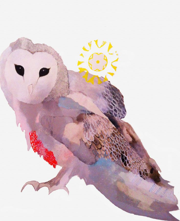 barn owl essays Upstream: selected essays has been added to your cart add to cart buy now turn on 1-click ordering for this browser  the barn owl, the snapping turtle, the fox .