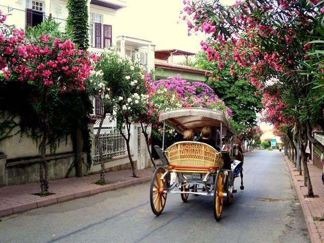 Great Istanbul getaway; Büyükada!