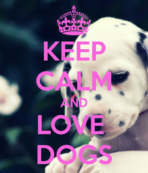 KEEP CALM AND LOVE DOGS http://pinterest.com/nfordzho/boards/
