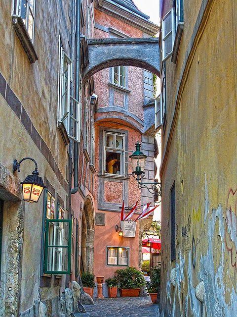 Vienna, Austria ...   Minha viagem foi inverno de 2010/2011 e a paisagem estava bem diferente