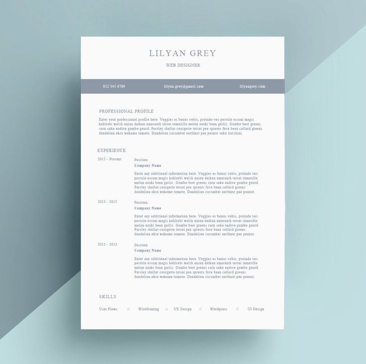 Simple Resume / CV and Cover Letter Template for MS Word | Professional and Creative Resume Design | Instant Digital Download | Lilyan Grey by IvyBayDesigns on Etsy