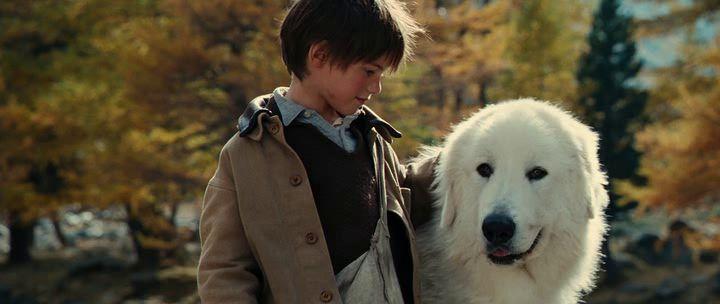 """Il primo post dell'anno lo dedico ad un film che hanno trasmesso ieri serain televisione: """"Belle & Sèbastien"""" che ci racconta dell'amicizia tra un cane e un bambino e d…"""