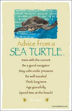 Advice from a Sea Turtle  Swim with the current Be a good navigator Stay calm under pressure Be well-traveled Think long term Age gracefully Spend time at the beach!