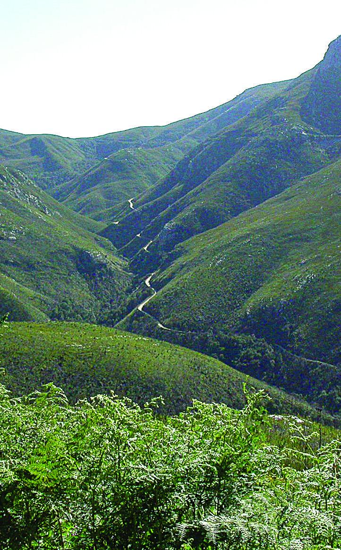 Montagu Pass, George