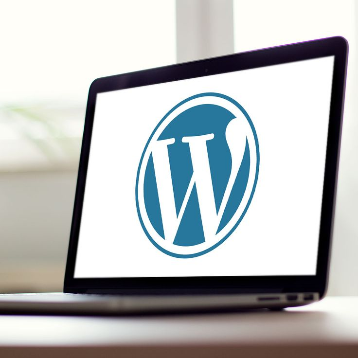 Need help with your Wordpress website?