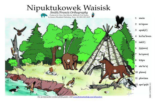Mikmaq animals