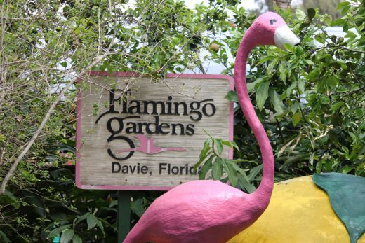 Flamingo Gardens in Davie, FL ... not a day trip, but an idea.