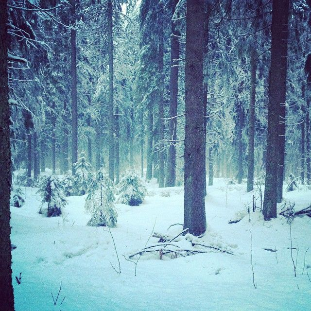 Having a walk on the Puijo hill :) #kuopio #Ilovekuopio #winter #snow #puijo #puijonmäki