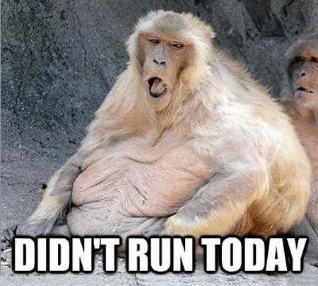 How I feel when I don't exercise…