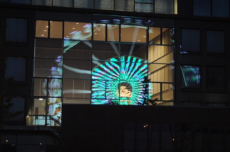 Hamburger HafenCity 2010