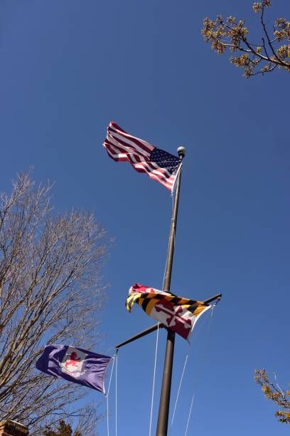national state and county flags waving