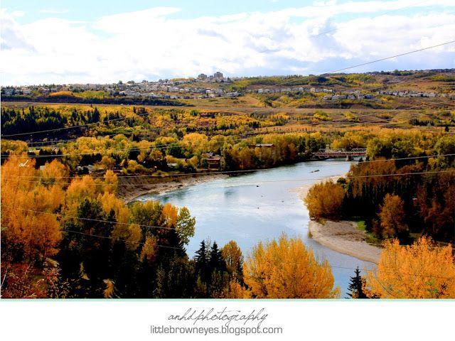 Fall time Calgary #fall #calgary #nature #photography #canada #leaves #river #canada #beauty