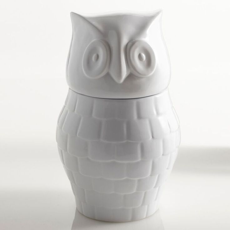Store your cookies or whatever other snacks in our Hootie Cookie Jar. Bring A Little Quirk To Your Kitchen With This Unique Treat Container. #owl #cookiejar